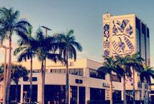 The James Royal Palm's Guide to Miami / by The James Hotels