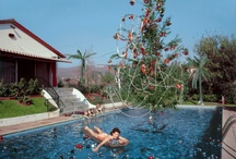 Slim Aarons / by Chuck Stone