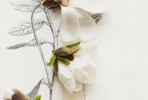 [ COLOUR - WHITES ] / by Ania Steshko