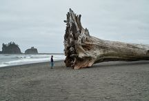 "places to run away too... / ""The world is a book and those who do not travel read only one page.""