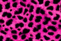 Printz / Animal skins  / by Samantha Keller