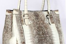 Shoes & Handbags forever my favorite accessory / by Doreen Reca
