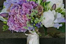 Sweet Dreams Inn Flower Gardens / by Sweet Dreams Inn Victorian B&B