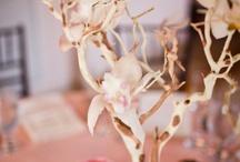 Wedding scrapbook - themes / look + feel / by Kate Wanwimolruk