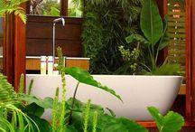 Bathroom Design Ideas / by Shelly Long
