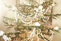 Christmas / by Carolyn Frondorf