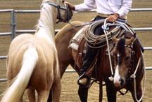 Great horseman / by Theresa Pellicano