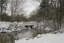 Winter at Duke Farms / by Duke Farms