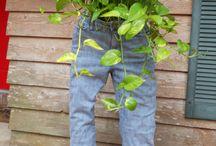 Gardening/Outdoor Ideas / by Janie Salazar