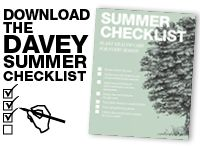 Summer Tree Checklist / by The Davey Tree Expert Company