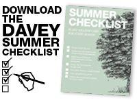 Summer Tree Checklist / by The Davey Tree Expert Company