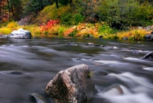 Fall Foliage in Plumas County / by Plumas County Tourism Council
