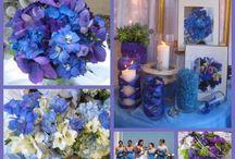 Sabrina wedding ideas!!!!;) / by Alecia Curtis