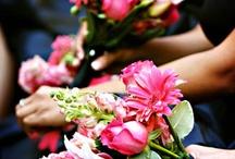 Dream Wedding & Marriage..  / by Tiffany Smith