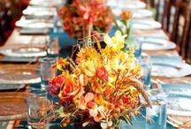 Thanksgiving 2012 / by Sylvia J. Heard