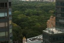 I LOVE NYC / by Ralphie Winston