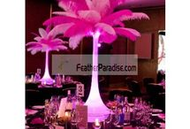 Wedding centerpieces / by Feather Paradise