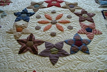 Applique Quilts / by Laura Norris