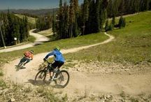Top Bike Parks in North America / See our list with the Top 5 Bike Parks in North America.  / by VacationRoost