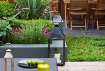 Garden Ideas / by deardesigner