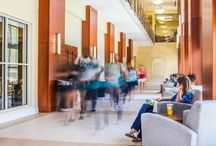 Student Life @ CSU / Charleston Southern University, Charleston, South Carolina / by Charleston Southern