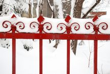 ~ Red In Winter ~ / A Pop Of Color In A World Of White / by Holly Nelson Rader