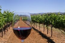 Red Wines Pairing with Food / by Robyn McDonald (Fishman)