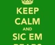 Sic 'em Bears! / All stuff related to my beloved alma mater / by Autumn Knoth-Jez