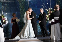 aquarium wedding / by Kadi Erickson