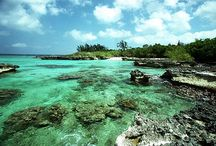 Grand Cayman Island March 2013 / by Cailin Langan
