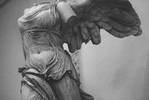 Wings / by Megan Martel