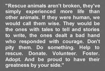 Animal Rescue <3 / by PrideRock Wildlife Refuge