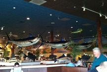 Awesome Workday Lunch Spots - Wilmington, DE / by Sobieski Services