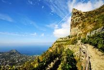 Wines of Ischia / by Hotel Ape Regina Ischia