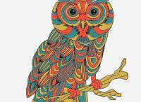 Owls / All things owls / by Terri VanTassel