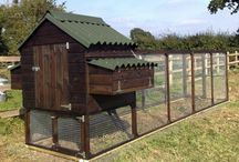 Chicken Coops... / by Denise Linney