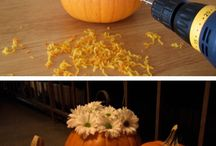 Pumpkin Ideas  / by Rachel Evans