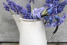 Easter Ideas / by Sharlotte Way