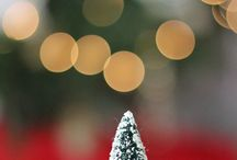 Bokeh / by Claudia Hill-Sparks