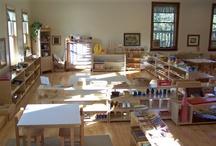 Montessori Homeschool / by Jenn Wallis