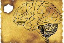 Brain / by Elizabeth Sautter
