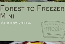 Forest To Freezer Mini Menu August 2014 / by Once A Month Meals