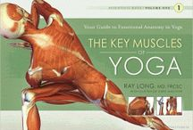Yoga Anatomy / Exploring the full spectrum of yoga anatomy / by Dallas Yoga Center