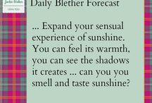 Blether Forecasts / by Jackie Walker