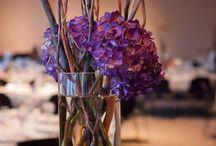 Plum Rose and Cream Wedding / by Stephanie Shipley