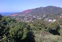 Grenada / Pictures from all aspects of the island! / by Trishee Charlz