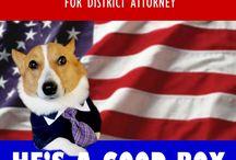 Lawyer Dog / by Kaye Coleman