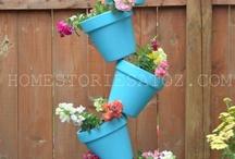 Garden/flowers / by Kathy Deuman
