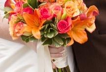 Wedding 2013!! / by Liz Vela