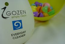 iGozen Everyday Cleaners / iGOZEN's Everyday Cleaner is the complete opposite, in that it contains no harsh chemical ingredients whatsoever.  http://www.igozen.com/shop/everyday-cleaner/ / by iGOZEN